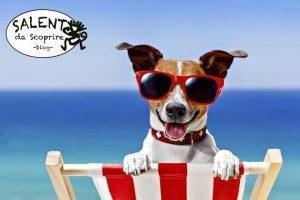 cane-in-vacanza nel salento